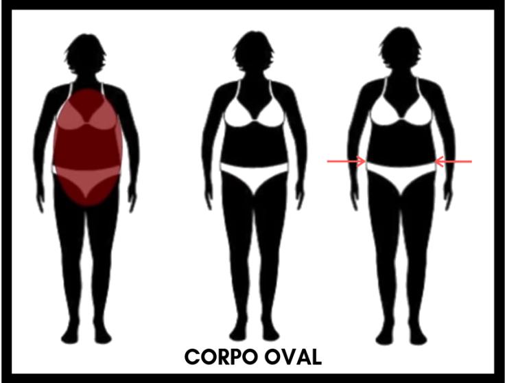 O que é corpo oval